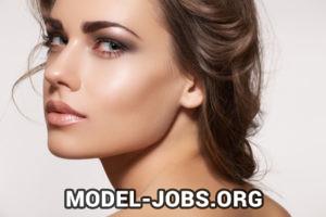 Beruf - Model